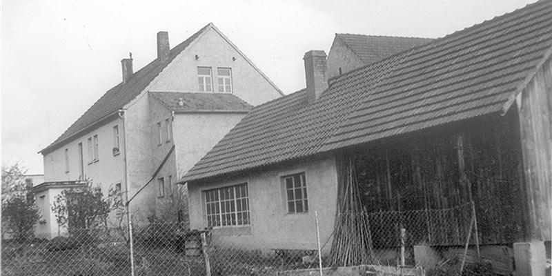 Geschichte 1981